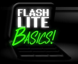basics of flash lite