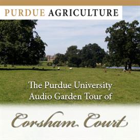 corsham court garden ipod mp3 audio walking tour