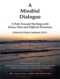 Haiti Relief EBook: A Mindful Dialogue | eBooks | Psychology & Psychiatry