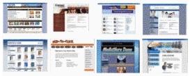 755+turnkey websites php scripts mysql +14 clones +18 bonuses