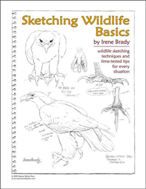 Sketching Wildlife Basics | eBooks | Arts and Crafts