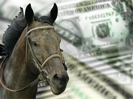 win big money using small stakes horse racing systemwin big money usin