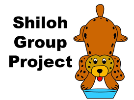 shiloh group project