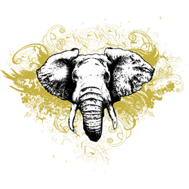 elephant grunge vector illustration