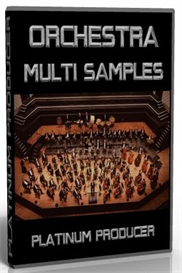 Hip Hop - Dirty South Orchestra Multi Samples | Music | Soundbanks