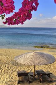Bahama Mama: 6 Class Segments Ebook | eBooks | Religion and Spirituality