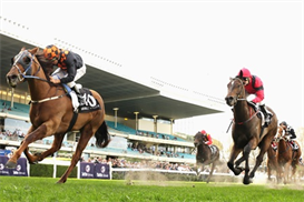 Horse Racing System r/r | eBooks | Sports