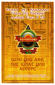 actual fact #24 who you are - not what you accept