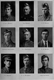 edinburgh university roll of honour 1914-1919 plate 50