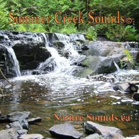 Summer Creek Sounds 2 hr | Music | New Age