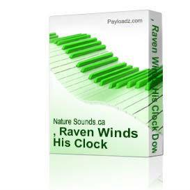 , Raven Winds His Clock Download | Music | New Age