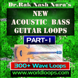 new acoustic bass - part -1
