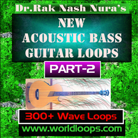 new acoustic bass - part -2