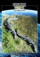 Cosmos Global Documentaries  ALLIGATOR | Movies and Videos | Action