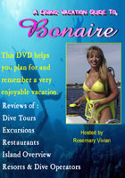 A Diving Vacation Guide to Bonaire | Movies and Videos | Action