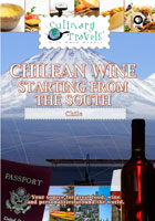 culinary travels  chilean wine-starting from the south balduzzi, san pedro, casa silva
