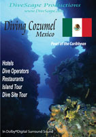 Diving Cozumel Mexico Pearl of the Caribbean | Movies and Videos | Action