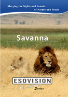 ESOVISION Relaxation  SAVANNA | Movies and Videos | Action