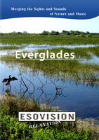 ESOVISION Relaxation  EVERGLADES | Movies and Videos | Action