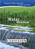 ESOVISION Relaxation  WATER MEADOW | Movies and Videos | Action