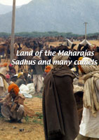 land of the maharajas  land of the maharajas: sadhus and many camels
