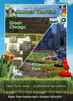 garden travels  green chicago / millennium park