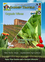garden travels  organic wines / great plants picks!