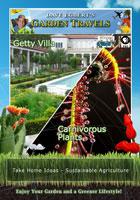 garden travels  getty villa/carnivorous plants
