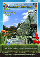 garden travels  flowering trees/plant delights nursery