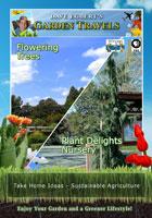 garden travels  flowering trees/plant delights nursery