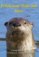 Yellowstone Trails and Tails | Movies and Videos | Action