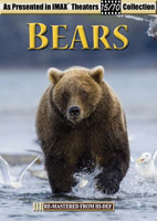 IMAX  Bears | Movies and Videos | Action