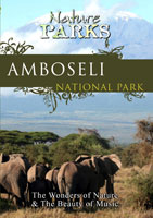 nature parks  amboseli national park kenya