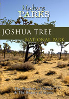 Nature Parks  JOSHUA TREE NATIONAL PARK California | Movies and Videos | Action