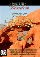 Nature Wonders  FIRE CANYON Nevada U.S.A. | Movies and Videos | Action