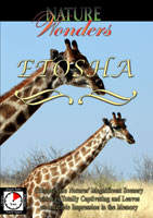 Nature Wonders  ETOSHA Namibia | Movies and Videos | Action