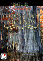 nature wonders  louisiana swamps u.s.a.