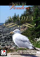 nature wonders  acadia maine u.s.a.