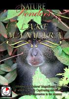 Nature Wonders  LAKE MANYARA Tanzania | Movies and Videos | Action