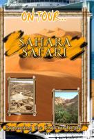 on tour...  sahara safari