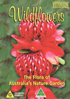 Wildflowers The Flora of Australia's Nature Garden | Movies and Videos | Action
