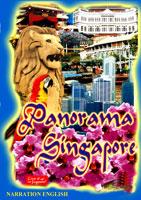Panorama Singapore | Movies and Videos | Action