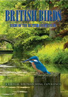 british birds  birds of the british countryside