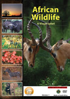 African Wildlife Version 1 A Visual Safari | Movies and Videos | Action
