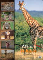African Wildlife Version 2 A Visual Safari | Movies and Videos | Action