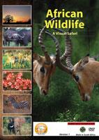 african wildlife version 1 a visual safari