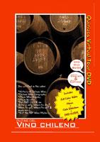 Rutas Del Vino Chileno DVD GUIDE | Movies and Videos | Action