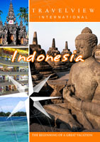 travelview international  indonesia