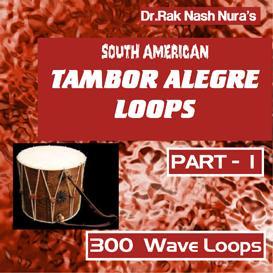 South American Tambor Alegre -Part-1   Music   Soundbanks