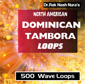 north american dominican tambora loops